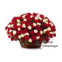 Ритуальная корзина из живых цветов №16
